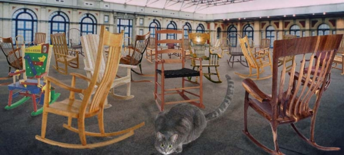 Long Tailed Cat In A Room Full Of Rocking Chairs